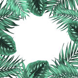 Tropical jungle palm monstera green leaves frame. Exotic tropical jungle rainforest bright green palm tree and monstera leaves frame template with place for text Royalty Free Stock Photo