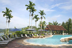 Tropical Jungle Pool stock photography