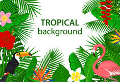 Free Tropical Jungle Rainforest Plants Flowers Birds, Flamingo, Toucan Background. Royalty Free Stock Images - 97014689