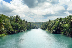 Tropical Jungle River. Between palm trees on an exotic canyon slope. Tourism landmark Loboc tidal river in Loboc City, Bohol, Philippines, famous for its Royalty Free Stock Photography