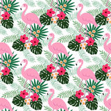 Tropical jungle seamless pattern with flamingo bird, hibiscus and plumeria flowers and palm leaves, flat design,. Illustration background Stock Photos