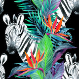 Tropical jungle seamless pattern. Floral design with zebra on white background. Stock Photo