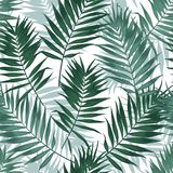Tropical jungle seamless pattern with palm leaves. Summer fabric floral design, vector illustration background. Royalty Free Stock Photo