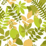 Tropical jungle trendy seamless pattern with exotic palm leaves. And berries, leaf branches. Vector spring or summer floral endless background. Ideal for Royalty Free Stock Images