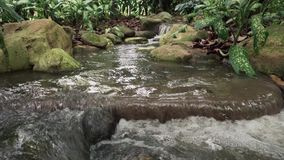 Tropical Jungle Waterfall. In Botanic Gardens stock footage