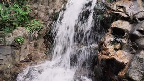 Tropical Jungle Waterfall stock video footage