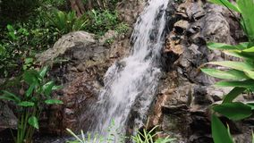 Tropical Jungle Waterfall stock video