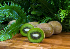 Tropical Kiwi Fruit Royalty Free Stock Image
