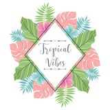 Tropical label with palm leaves. Perfect for invitations, greeting cards, blogs, posters and more. Vector illustration. Stock Image