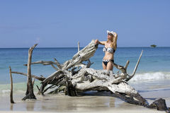 Tropical lady Royalty Free Stock Photography