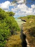Tropical Lagoon. Spanish Lagoon / Aruba Royalty Free Stock Photography