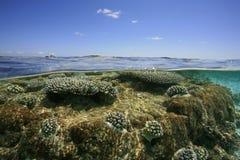 Tropical lagoon Royalty Free Stock Photos