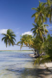 Tropical lagoon - French Polynesia Royalty Free Stock Photography