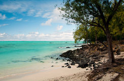 Tropical lagoon in Ile aux cerfs Royalty Free Stock Photography