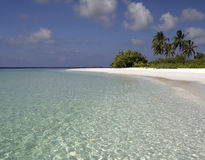Tropical lagoon in the Maldives Stock Images