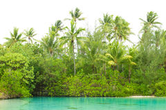 Tropical lagoon Royalty Free Stock Photos