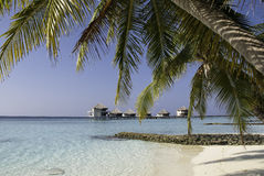 Tropical Lagoon with Palms and Waterhuts. Amazing view on a tropical lagoon at the Maldives Royalty Free Stock Photos