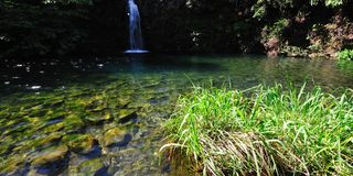 Tropical Lagoon & Waterfall Stock Photography