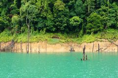 Tropical Lake Stock Photo