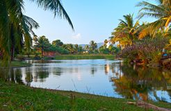 Tropical lake Royalty Free Stock Photo
