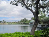 Tropical lake Stock Images