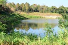 Tropical lake Stock Image