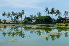 Tropical lake and palm trees with water reflections in Candidasa Royalty Free Stock Images