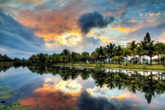 Tropical lake reflection Royalty Free Stock Images
