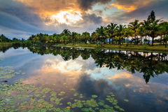 Tropical lake sunrise Royalty Free Stock Photo
