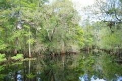 Tropical lake Royalty Free Stock Photography
