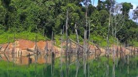 Tropical lake at Tasik Kenyir stock video
