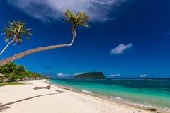 Tropical Lalomanu beach on Samoa Island with palm trees Stock Image