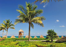 Tropical landscape. This image depicts a landscape in front of the beach, its elements are generic, but it all leads back to the idea of a holiday, and the Stock Photography