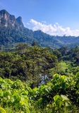 Tropical landscape. Royalty Free Stock Images