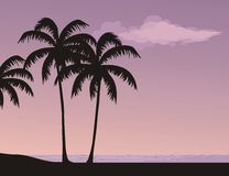 Tropical landscape. Silhouettes of palm trees in the sunset Royalty Free Stock Photos