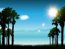 Tropical landscape background Stock Image