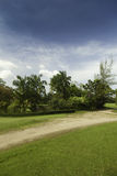 Tropical landscape. Royalty Free Stock Photography