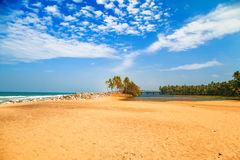 Tropical landscape with blue sky and palm trees. Royalty Free Stock Images