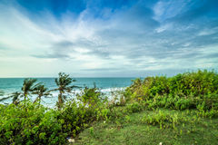 Tropical landscape on the cliff of Balangan beach, Bali, Indonesia, Asia. Sunny day, beautiful blue sky, green palms. Stock Photography