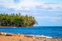 Tropical landscape with coco palm trees and sea. Beautiful lagoon with empty beach. Fresh greenery of tropical island. Seaside scene with tropical forest Royalty Free Stock Photos