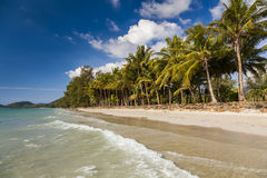 Tropical landscape with coconut palms and sandy beach. Koh Chang Stock Photography