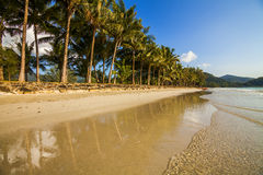 Tropical landscape with coconut palms and sandy beach. Koh Chang Royalty Free Stock Images