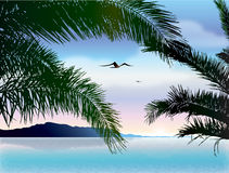 Tropical landscape: dusk. Tropical landscape with silhouette palm leaves and birds. Vector Illustration Stock Illustration