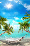 Tropical landscape Stock Photos