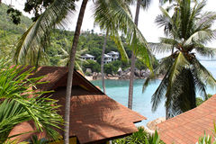 Tropical landscape on the island of Koh Samui Royalty Free Stock Photo