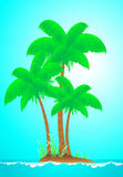 Tropical landscape with island, wave, sun and palm Royalty Free Stock Images