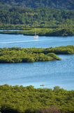 Tropical landscape with mangrove islets Stock Photo