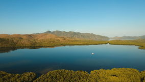 Tropical landscape, mountains, forest, bay. Busuanga, Palawan, Philippines. Tropical landscape, at sunrise time with mountains, tropical forest, bay, mangrove stock video