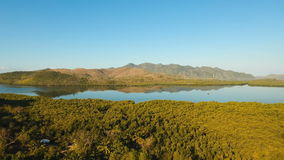 Tropical landscape, mountains, forest, bay. Busuanga, Palawan, Philippines. Tropical landscape, at sunrise time with mountains, tropical forest, bay, mangrove stock footage