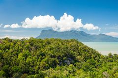Tropical landscape over jungle and hills Stock Photos
